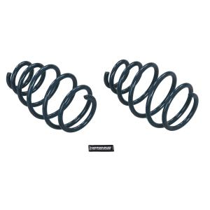2010-2014 Camaro Sport Coil Springs from Hotchkis Sport Suspension - Thumbnail Image
